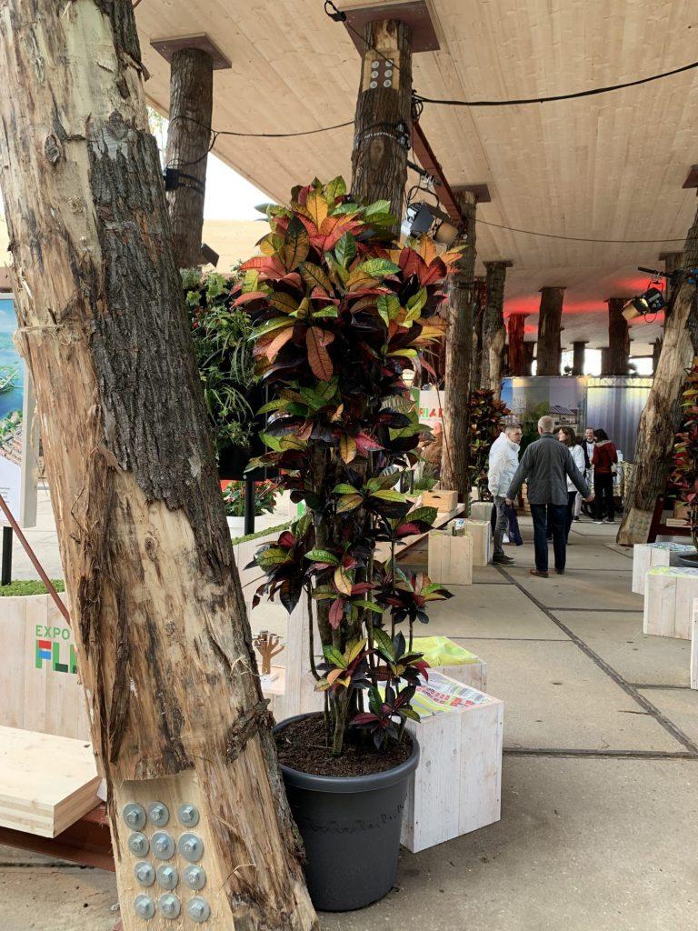 Eine Pflanze neben einem naturbelassenen Baumstamm dekorativ in Szene gesetzt